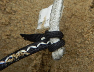 Small bridle knot on the Bandit